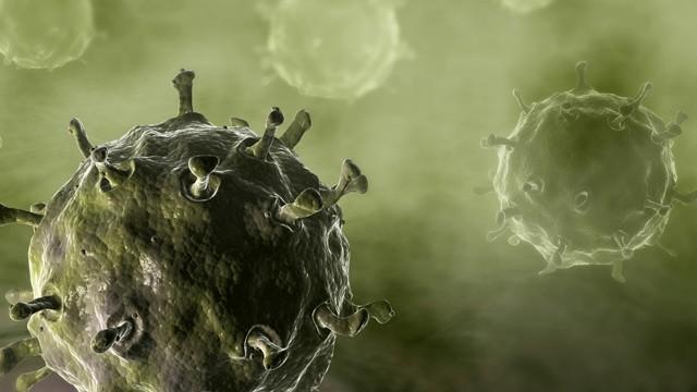 bird-flu-controversial-research.jpg