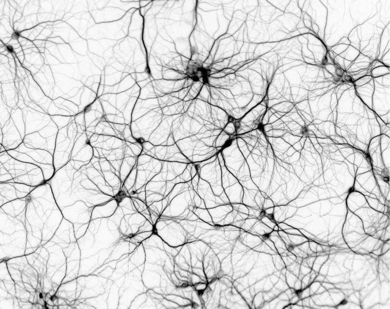 artificial-neurons