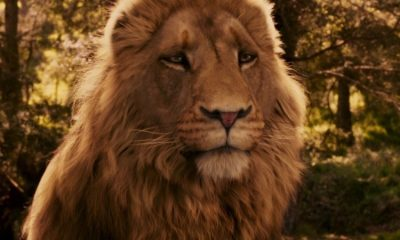 The Chronicles of Narnia Netflix Aslan